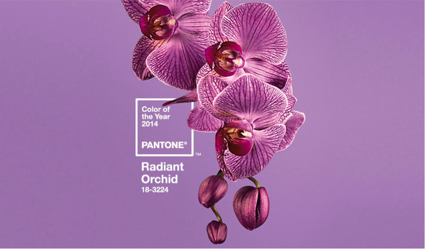 pantone orchard
